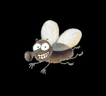 Cuanto dura una mosca