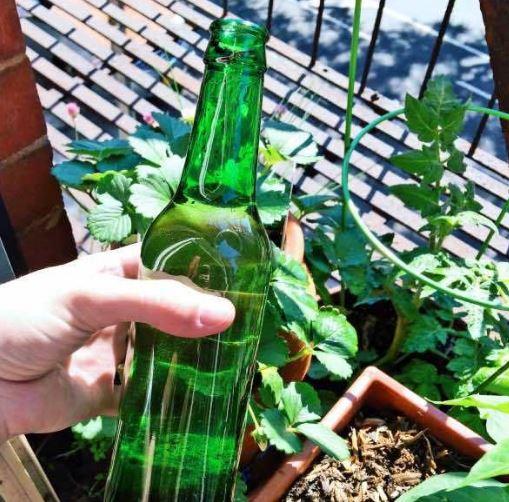 cuantos años tarda en degradarse una botella de vidrio