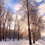 Cuanto dura el invierno