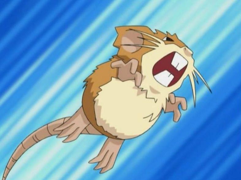 rattata-evolucion